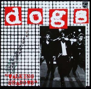 dogs et cathé vers B 032021